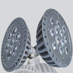 PAR LED Grow Light